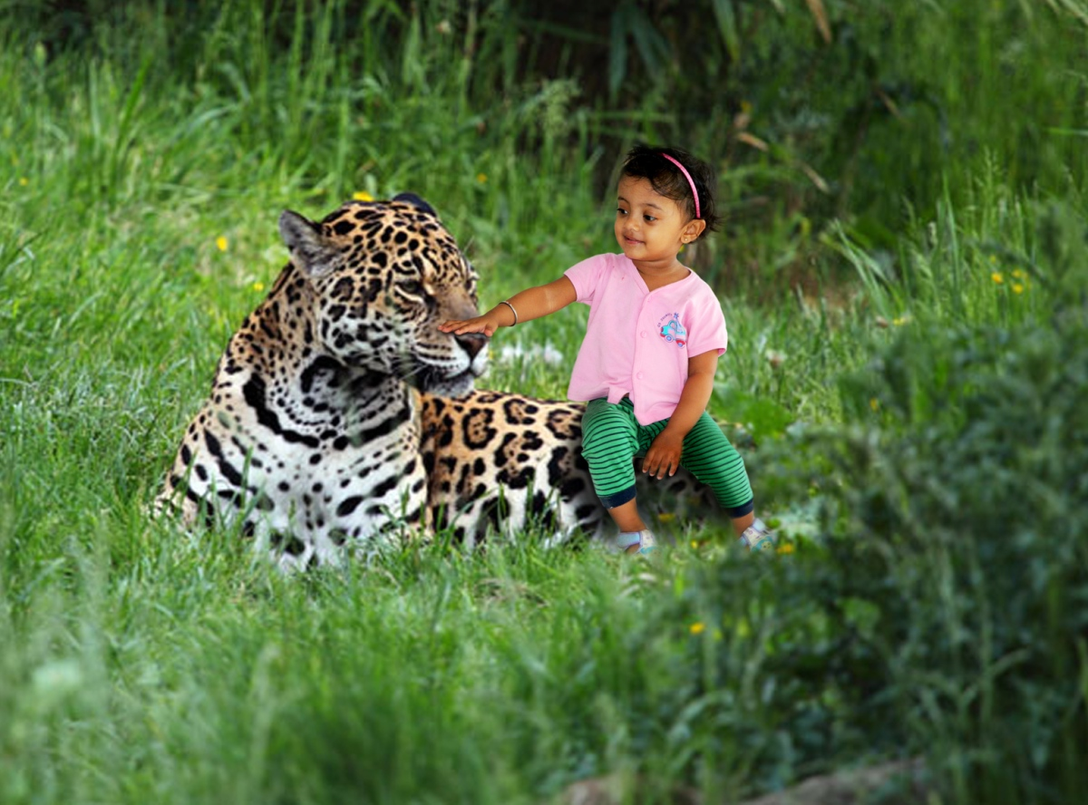 Jungle Book – A Photoshop Manipulation